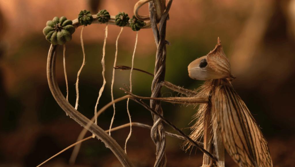 Lėlinės kino animacijos programa vaikams-Materia Magica-gamta